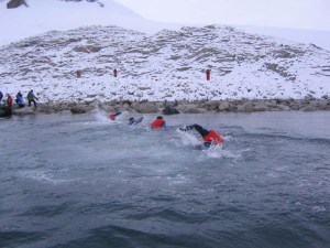 Antarctic Swim competition